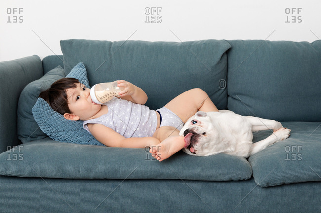 Dog licking toddler's foot while he drinks from cup on sofa