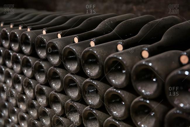 Dusty wine bottles aging in a cellar