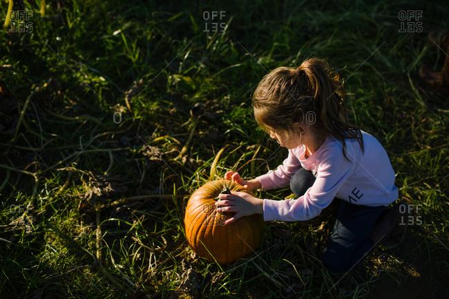 Little girl with a pumpkin in a field