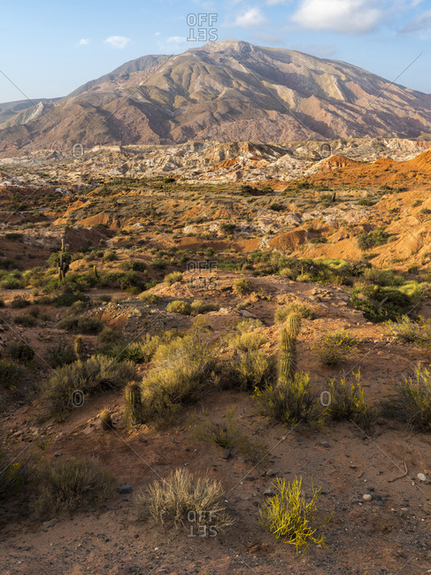 Los Cardones National Park in the Valles Calchaqui region, near Cachi, Argentina.
