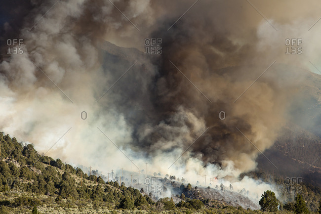 USA, California, Lee Vining. Cal Fire at work on the marina wildfire