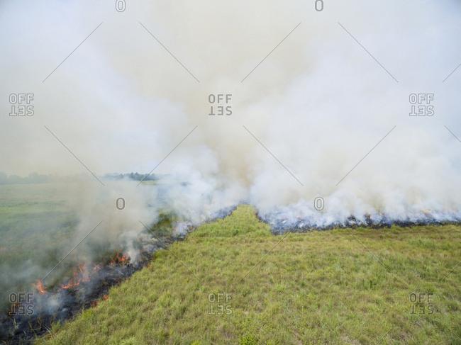 Summer prairie burn Prairie Ridge State Natural Area, Marion County, Illinois