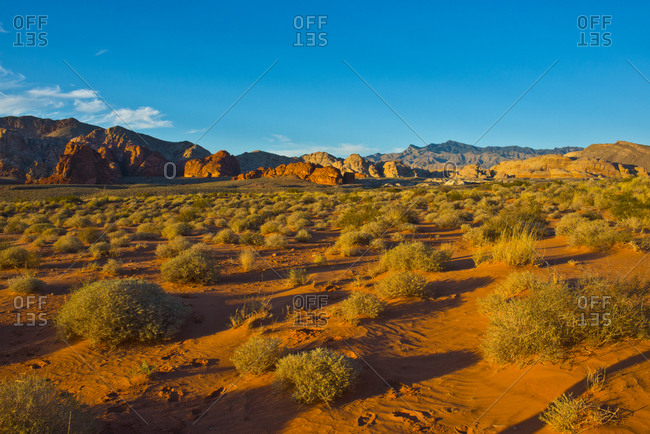 USA, Nevada, Mesquite. Gold Butte National Monument, Mud Road vista