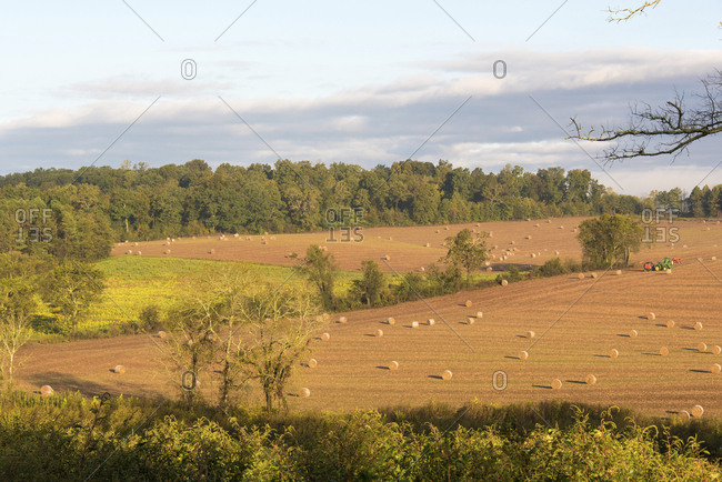 USA, Tennessee. Pastoral farm scene in morning light. Long shadows from hay bales