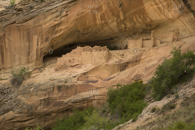 USA, Utah, Bears Ears National Monument. Monarch Cave ruins left by Anasazi Indians.