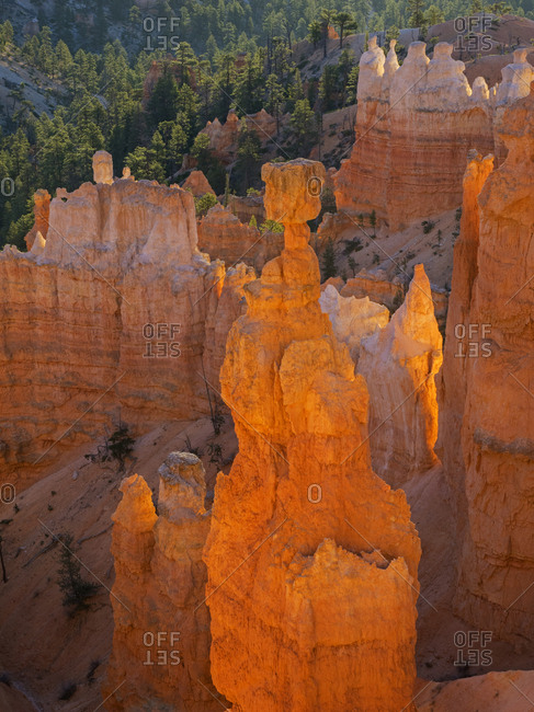 Utah, Bryce Canyon National Park. Thor's Hammer