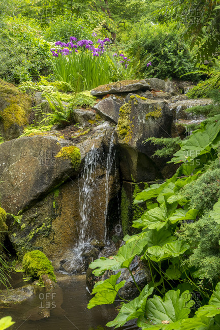 USA, Washington State, Bellevue. Botanical Garden.