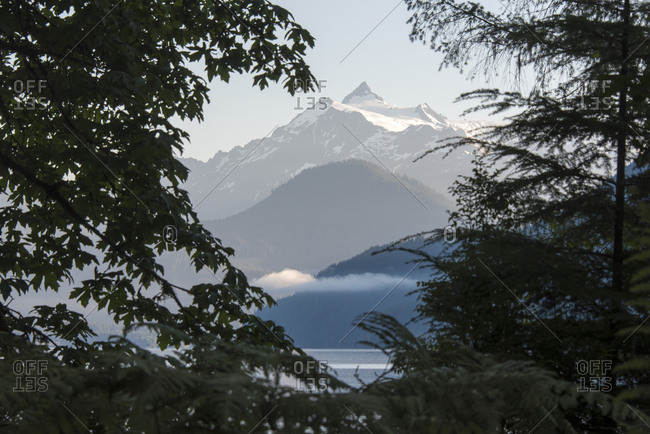 USA, Washington State. Mt. Shuksan framed by shoreline vegetation