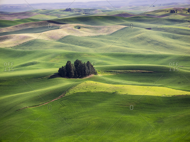 Aerial view of Palouse Region
