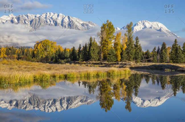 USA, Wyoming. Grand Teton National Park, Schwabacher Landing, Mt. Moran and the Teton mountains are reflected in a channel of the Snake River.