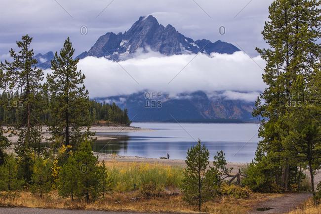 USA, Wyoming, Grand Teton National Park, Jackson Lake in Fall colors