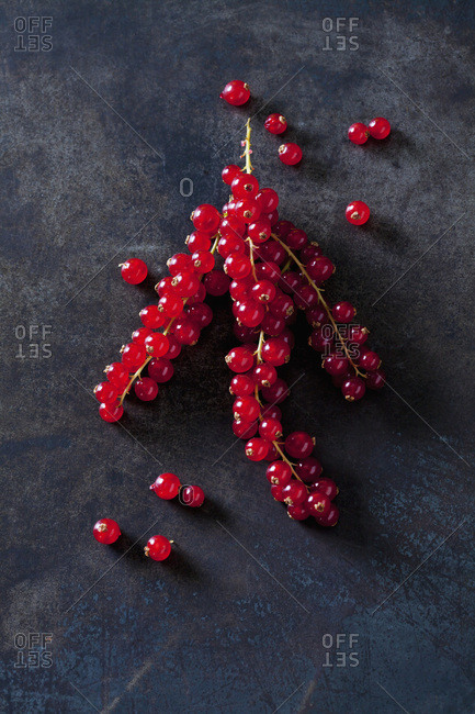 Red currants on dark metal
