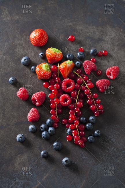 Berries on dark metal