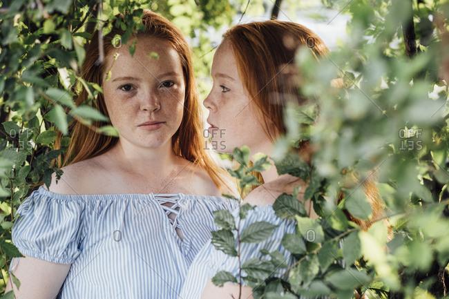 Redheaded twins at a tree