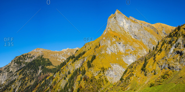 Germany- Bavaria- Allgaeu- Oytal- autumnal forest in the Allgaeu Alps with Himmelhorn mountain