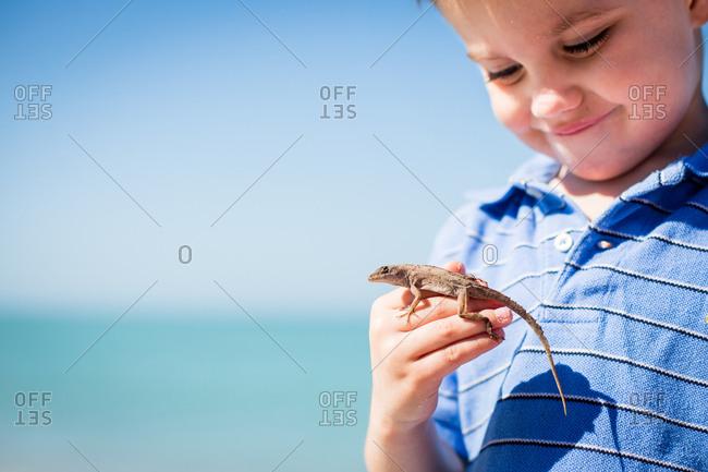 Boy holding a lizard