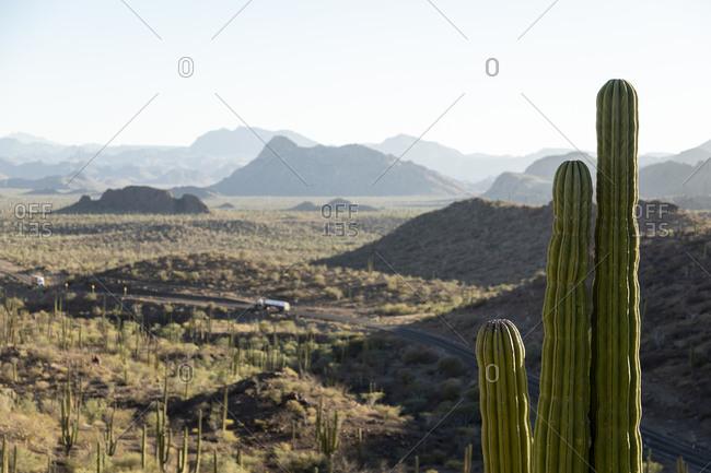 Desert and Transpeninsular road to Mulege, Baja California Sur, Mexico
