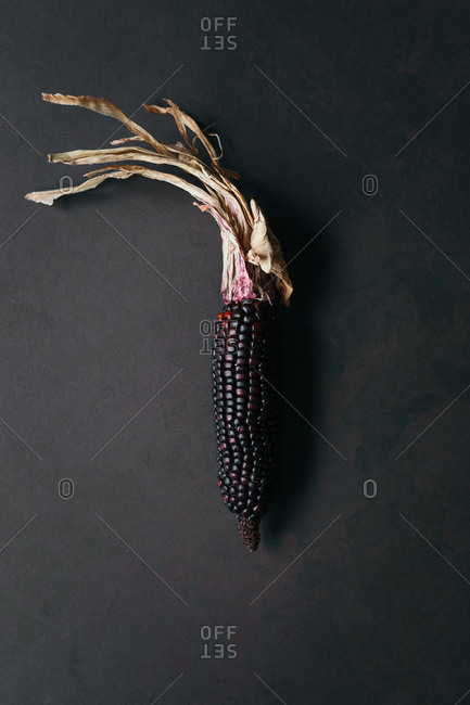 A single dried corn on a grey stone surface