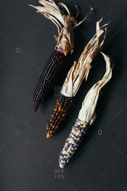 Three dried corn on grey stone surface