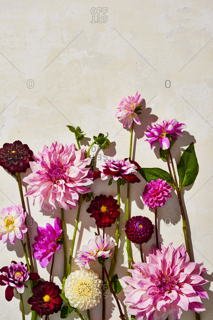 Pink flower arrangement on stone