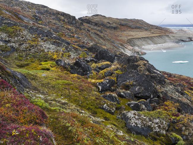 Tundra near glacier Eqip (Eqip Sermia) in western Greenland, Denmark