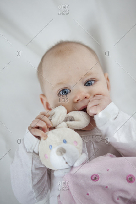 Portrait of baby girl with toy bunny