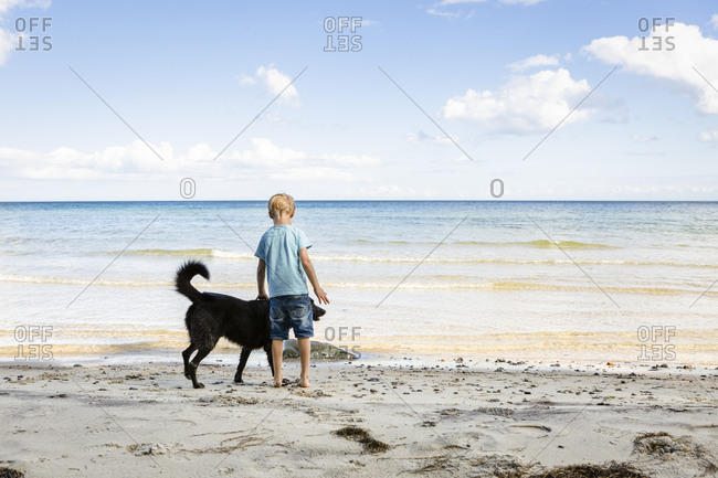 Boy stroking dog at the beach