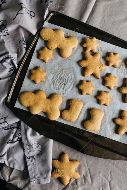 Baked gingerbread cookies on a baking tray