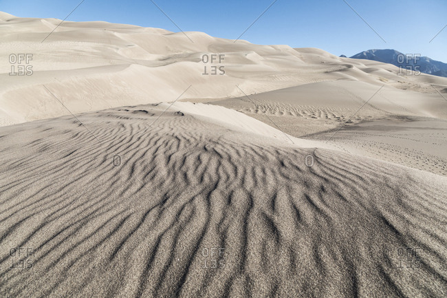 Dunes at Great Sand Dunes National Park and Preserve
