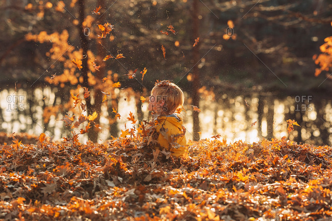 A young boy playing in a leaf pile
