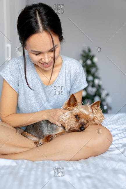 Woman petting a yorkie in her lap