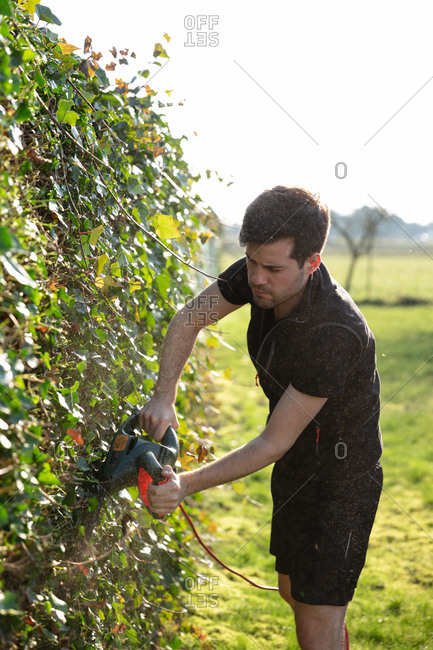 Cutting the hedges