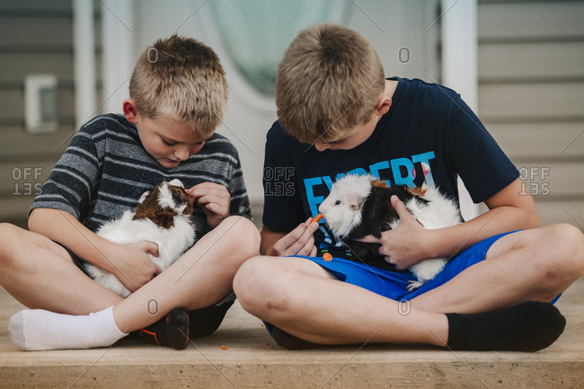 Two boys holding Guinea Pigs