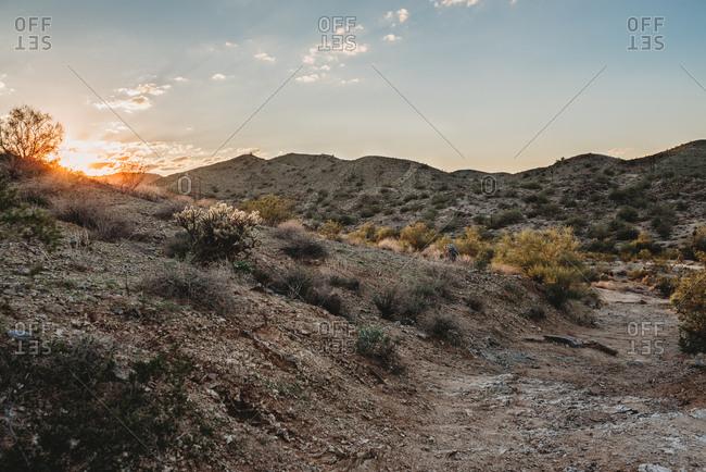 Mountains desert landscape
