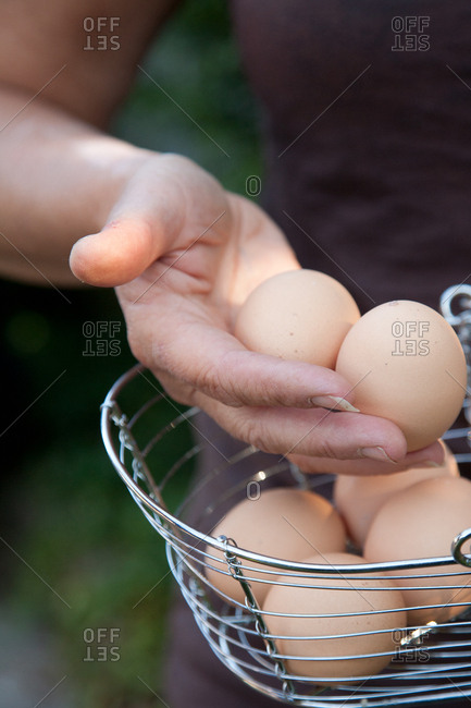Detail of hand with eggs in wire basket