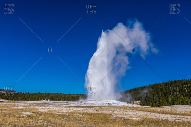 September 16, 2018: Old Faithful, a cone geyser, Yellowstone National Park, UNESCO World Heritage Site, Wyoming, United States of America, North America