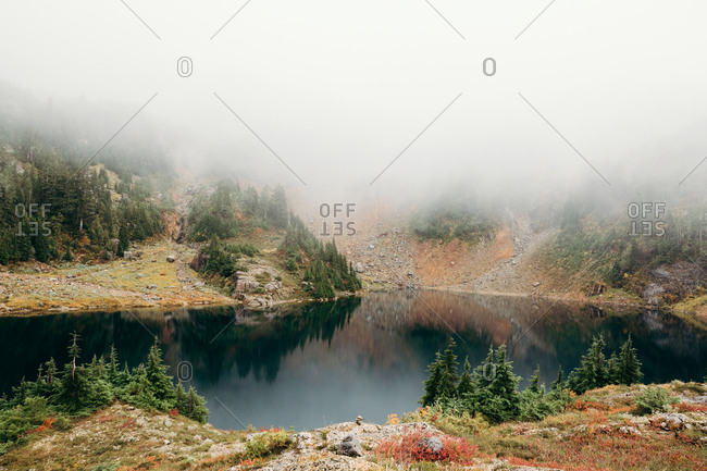 Foggy mist over lake in the forest