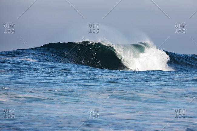 Curling blue waves in the ocean