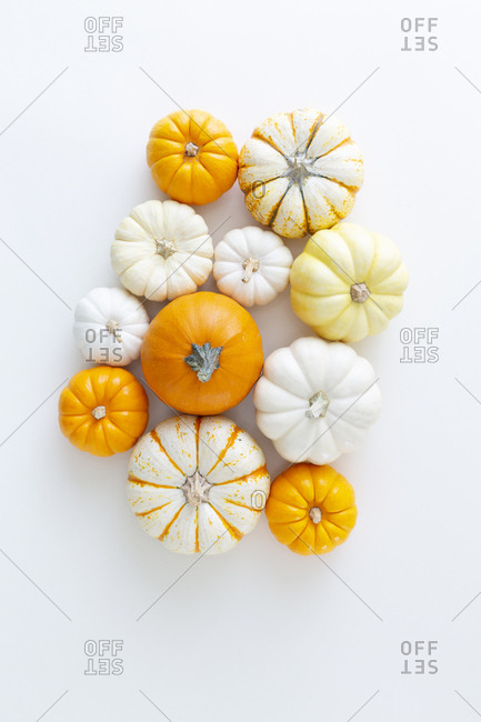 A variety of orange and white squash and pumpkins against a white background