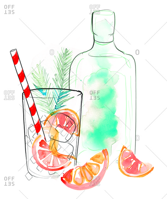 Illustration of cocktails and citrus garnish