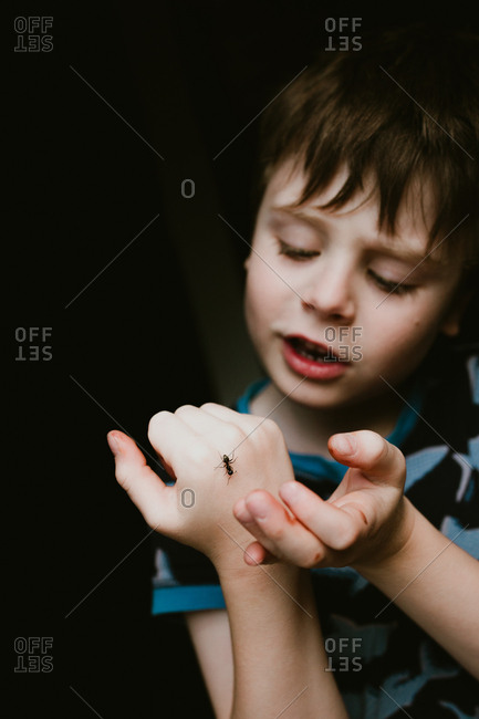 Boy looking at an ant crawling on his hand