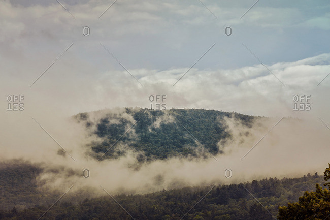 Forested mountain ridge enveloped by clouds