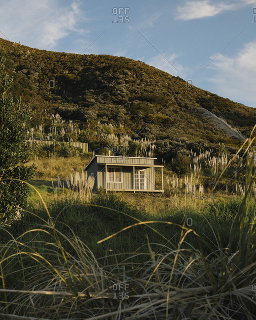 Sundrenched beach front cabin in tall grass