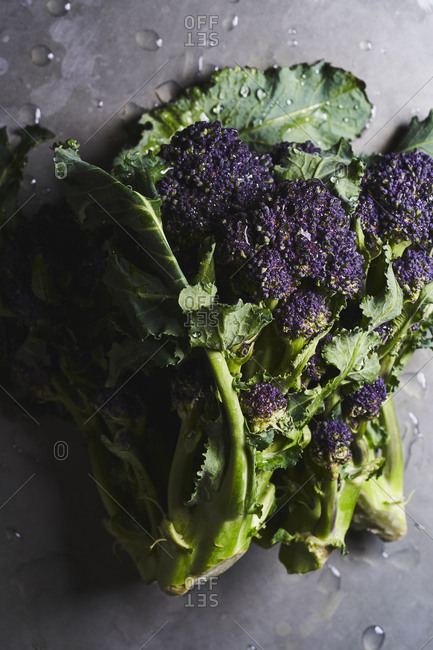 A portrait of a few piles of purple sprouting broccoli with leaves on a metallic surface.