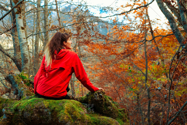 Back view of young woman in red jacket sitting on mossy trunk of old tree in majestic autumn forest