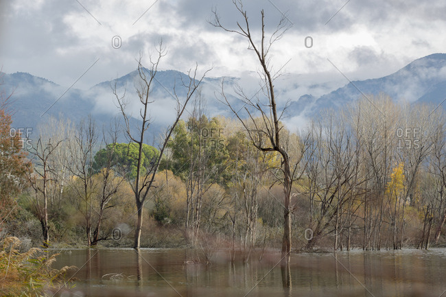 View of lake and trees with mountains