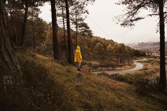 Side view of human in yellow raincoat on hill between forest and view on lands with road in Isoba, Castile and Leon, Spain