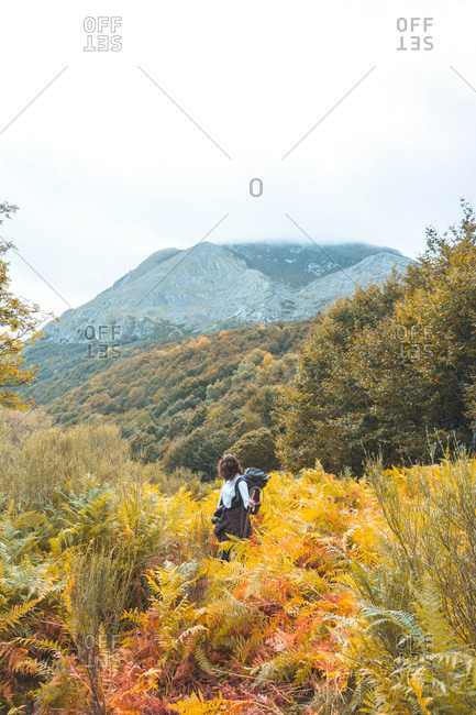 Lady with knapsack going between yellow grass and picturesque view on mountains with forest and cloudy ski in Isoba, Castile and Leon, Spain