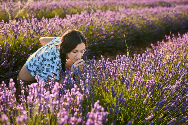 Attractive young lady smelling beautiful purple flowers on lavender field