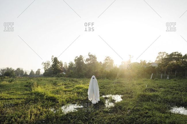 Man in ghost costume standing on grassy field against clear sky during sunset